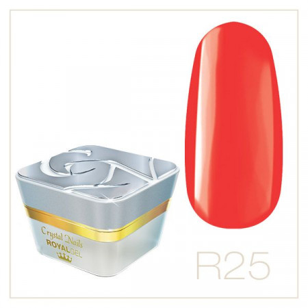 CN Royal Color Gel 25